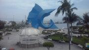Pez Vela desde un balcón del centro de Manzanillo | Foto: El Noticiero de Manzanillo