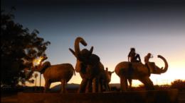 Imagen ilustrativa - Glorieta de los elefantes, Colima | Foto: Especial