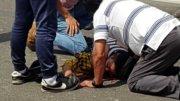 Mujer motociclista accidentada rumbo a Coquimatlán | Foto: El Noticiero de Colima