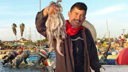 Imagen Ilustrativa de pescador | Foto: Conapesca