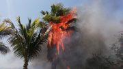 El incendio amenazó con arrasar con las viviendas de la zona | Foto: Especial