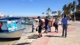 A propietarios de embarcaciones turísticas el gobierno federal les impide dar servicio a paseantes en altamar.