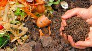Residuos compostables y reciclables de 6 municipios; usamos un simple vertedero al aire libre que no tiene normas ambientales, capas de membranas ni sistemas sanitarios: Diana Laura Vizcaíno Martínez
