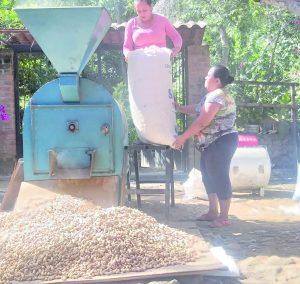 Uno de los principales ingresos de la comunidad, es por la venta de cacahuate, el tostarlo y empaquetarlo en costales, es una tarea que involucra a todos los miembros de la familia, principalmente a las mujeres.