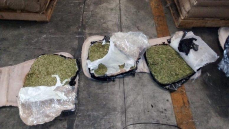 La Secretaría de Marina decomisó una tonelada de marihuana que se encontraba dentro de los respaldos de asientos para vehículos y que pretendían exportar a Chile.